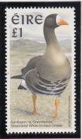Ireland 1997 MNH Scott #1040 1pd Greenland White-fronted Goose - Birds - 1949-... République D'Irlande