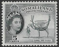 Somaliland Protectorate SG137 1953 Definitive 5c Mounted Mint [37/30903/2D] - Somaliland (Protectoraat ...-1959)