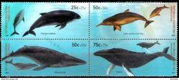 18619  Whales - Baleines - Argentina Yv 2616-19 - No Gum - Free Shipping - 1,50 - Baleines