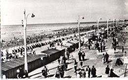 Bray Dunes Perspective De La Plage 1955  CPM Ou CPSM - Bray-Dunes