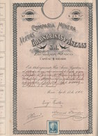Colondrinas Y Anexas - Compania Minera Nuevas Mexico 1906 - Shareholdings
