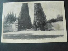 "1935 ANCIENT VERY BEAUTIFUL POSTCARD OF TAVARNUZZE "" VIALE X VILLA CORNAZZI "".// VIAGGIATA DA TAVARNUZZE - Italia"