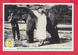 233444 / Advertising - D-r. PAVEL PATEV , 130 YEARS Sofia Zoo , Zoological Garden In Sofia ,  Animal Elephant , Bulgaria - Elefanten