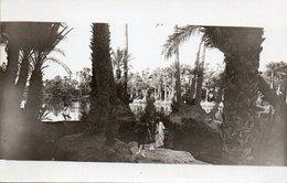 84Vn  Carte Photo Dahomey Environs De Cotonou - Dahomey