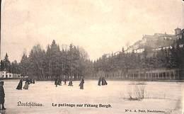 Neufchâteau - Le Patinage Sur L'étang Bergh (animée) - Neufchâteau