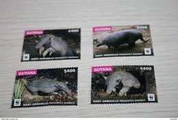 WWF 2016 Guyana Fauna - W.W.F.