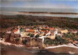 06-ILE-SAINTE-MARGUERITE- VUE GENERALE AERIENNE - Autres Communes