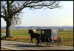 Amish Country : Amish Seasons - Lancaster
