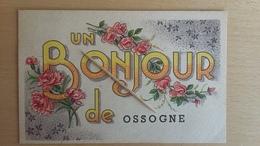 OSSOGNE - Un Bonjour De ...  1947 - Havelange