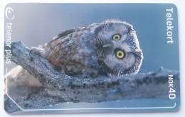 246 Bird Owl , , Noeway Used - Norway