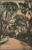 Avenue And Lodge At Anthony, Cornwall, 1907 - Valentine's Postcard - Other