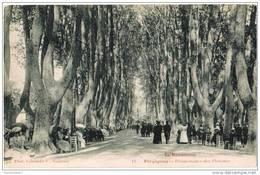 CPA PERPIGNAN - Promenades Des Platanes - Très Animée - Phot. Labouche F. N°12 - Perpignan