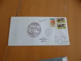 Lettre Cachet Dumont D'Urville T.Adélie T.A.A.F. 15/12/1984 Avec TP Australien Et Cachet Australie Griffe Paquebot - Timbres