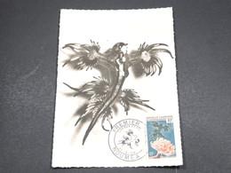 NOUVELLE CALÉDONIE - Carte Maximum 1959 , Limace De Mer - L 18267 - Cartes-maximum