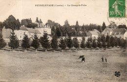 19. Peyrelevade. Le Champ De Foire - Autres Communes