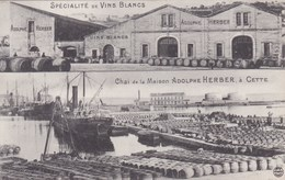 Cpa SPECIALITE DE VINS BLANCS CHAI DE LA MAISON ADOLPHE HERBER A CETTE  Carte Vierge - Autres Communes
