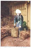 POSTAL   JAPON  - FIREWOOD ENTTING  (CORTANDO LEÑA) - Japón