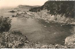 CPA-1960-83-LE BRUSC-POINTE Du MONT SALVAT-TBE - Autres Communes