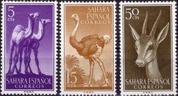 SAHARA SPAGNOLO 1957 - FAUNA, ANIMALI - 3 VALORI NUOVI MLH* - Sahara Spagnolo