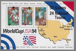 USA SG2905 1994 World Cup Football Championship Miniature Sheet Unmounted Mint [37/30909/7D] - Ganze Bögen