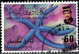Marine Life, Blue Sea Star, Linckia Lavigata, Brunei Stamp SC#522 Used - Brunei (1984-...)