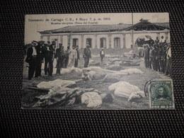 Costa Ria  Terremoto De Cartago 1910 - Costa Rica