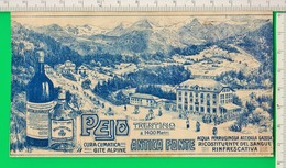 ETICHETTA. ACQUA. PEIO. Trentino. Antica Fonte Peio. - Pubblicitari