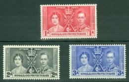 Somaliland Protectorate: 1937   Coronation     MNH - Somaliland (Protectorate ...-1959)