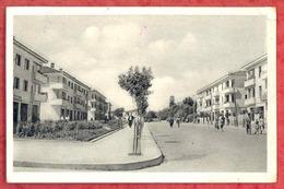 ELBASAN - ELBASANI - Neue Wohnbauten - Street Scene. Old Pc Albania AL01/24 - Albania