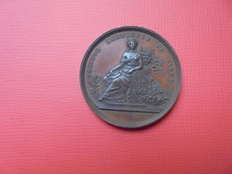 Liège Médaille (NON-DATEE +-1880)- 33 Mm-16,5 Gr. - Other