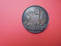 Liège Médaille 1853(ARGENT)(Datée Sur Tranche Et Attribuée)- 35 Mm-18 Gr. - Other