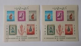 2 Blocs Timbres Neufs Afghanistan 1962 / Poste Aérienne Journées Agriculture - Afghanistan