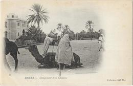 Biskra - Chargement D'un Chameau - Biskra