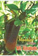"Plantes Carnivores  ""Monkey Cups""  (Borneo)  Carte Postale Neuve Non Circulée - Plantes Toxiques"