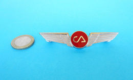 CA ... United States Beautifull Unkown Enameled Pilot Wings Badge * USA Airlines US Airline Airways - Crew Badges
