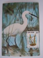 Cape-Vert Cabo Verde 1981 Egretta Garzetta Egrette Carte Maximum Yv 450B - Kranichvögel