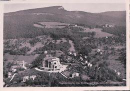 Dornach, Goetheanum Vu D'avion (1931) 10x15 - SO Soleure