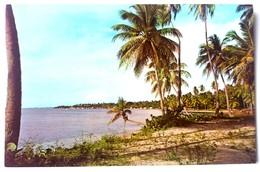 #305   Beach Scene At Guanajibo - PUERTO RICO Caribbean Islands - US Postcard - Postcards