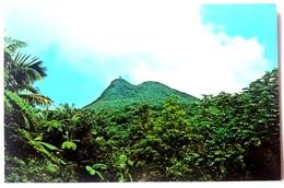 #305   Picacho Mountain And Tower At El Yunque - PUERTO RICO Caribbean Islands - US Postcard - Postcards
