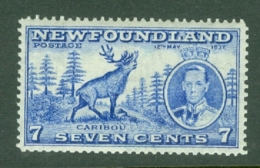 Newfoundland: 1937   Coronation Issue  SG259c   7c  [Perf: 13½]   MH - Newfoundland