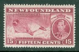 Newfoundland: 1937   Coronation Issue  SG263   15c  [Perf: 14]   MH - 1908-1947