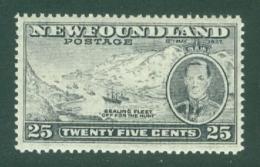Newfoundland: 1937   Coronation Issue  SG266b   25c  [Perf: 13½]   MH - Newfoundland