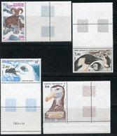 TAAF 1985 196-199. Antarctic Wildlife. Birds. Penguins. Fauna - Marine Web-footed Birds