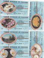 MINIASSEGNI -CASSA RURALE DI CALDES - SERIE FIGURATA FIORI.-- FDS-- - [10] Assegni E Miniassegni