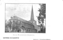 Souvenir De Maeseyck - Eglise Monumentale D'Aldeneyck (Uitg. Vanderdonck-Robyns) - Maaseik