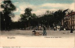 BELGIQUE - BRUXELLES - L'avenue De La Toison D'Or - Très Très Rare En Couleurs  - Précurseur - Prachtstraßen, Boulevards