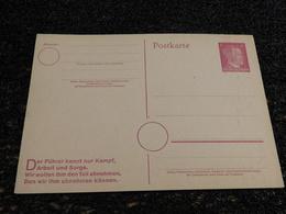Entier Postal, Deutch Reich, Timbre Hitler    (R5) - Deutschland