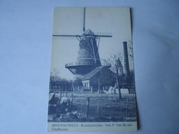 Sint Pauwels ( Sint Gilles Waas) Roomanmolen - Molen - Moulin // Foto: P.Van Bussel Eindhoven 19?? - Sint-Gillis-Waas