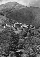 06-MORIGNOLE- VUE GENERALE ET LE MONT BERTRAND - Autres Communes