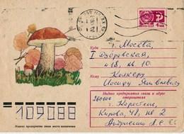 Entier  Postal Russe, Voyagé - Champignons